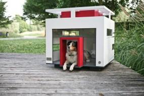 Warum Der Eventmanager Andre Heinemann Luxus Hundehutten Verkauft