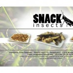 snack-insects