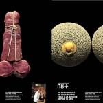 voir_18ans_meat