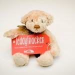 Teddy Tracker