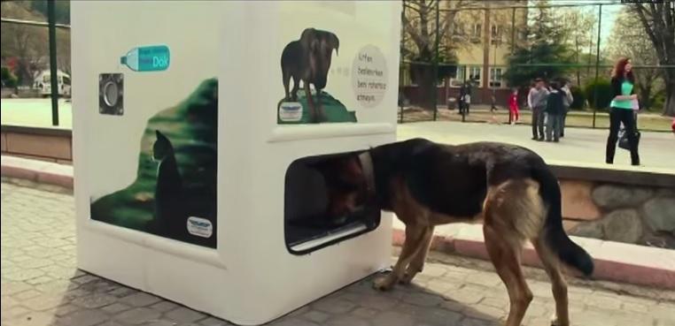 recyclingautomat-hundefutter