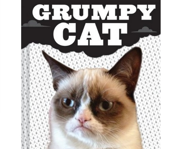 crumpycat